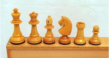 Imagen de Juego de ajedrez Nº  9